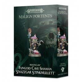 [WAR] AGE OF SIGMAR: Fungoid Cave-Shaman Snazzgar Stinkmullett