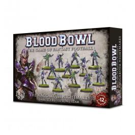 [BBW] BLOOD BOWL: DARK ELF TEAM CARDS (ESP)