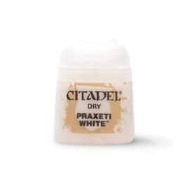 PRAXETI WHITE                  Paint - Dry